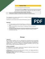 Examen final_INGAM (1).doc