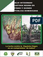 Sigatoka Negra2.cdr.pdf