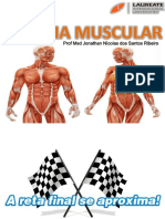 Aula Sistema Muscular Musculos - FG
