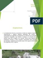 Parasitología Paso 3