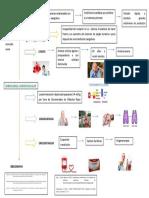 TACO_Reacción Transfusional_Nora y Recebeca-Mapa Conceptual
