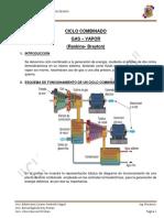 ROLY CICLO COMBINADO.docx