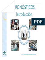 INTRODUCCION PRONOSTICO1