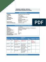Certificado de Envio - Demanda