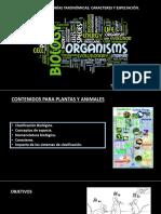 Catetorías Taxonómicas, Caracteres y Especiación