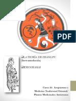 Medicina Tradicional China - ZHANG FU- InTRO e IDEOGRAMAS AD