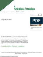 La Poda Del Olivo Arboles Frutales