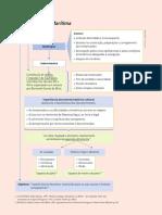 oexp12_esquema_sintese_tragico_maritima.pdf