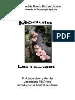 modulo8loshongos-