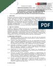 Modelo de Directiva DRE 2017