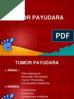 penyakit payudara