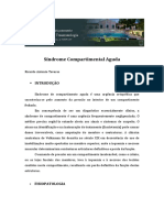 Texto Síndrome Do Compartimento