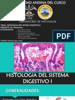 Histología Del Sistema Digestivo i
