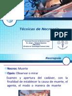 4176 Necropsia Huancayo Minpu