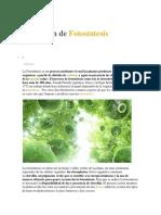 fis.docx