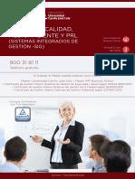 PDF Programa Curso Sistemas Integrados Gestion Sig