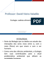 Aula 01 - Ecologia - Cadeia Alimentar