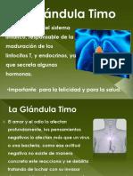 La Glándula Timo.pptx