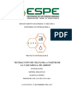 Extracción de Celulosa de Cascarillas de Arroz Informe Proyecto II