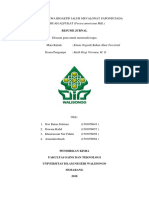 Analisis Senyawa Bioaktif Jalur Mevalonat Saponin Pada