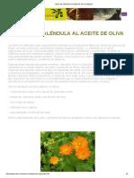 Jabón de Caléndula Al Aceite de Oliva Ecológico
