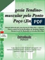 TCC ANALGESIA PONTO JING.pdf