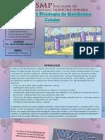 Fisiología de Mc - Seminario 1completa