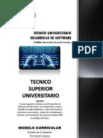 Tecnico Universitario Desarrollo de Software
