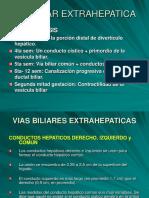VESICULA Y VIAS BILIARES.ppt