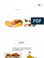 3 SEMANA CARBOHIDRATOS LIPIDOS.pdf