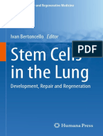 Stem Cells in the Lung Development Repair and Regeneration