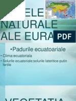Zonele Naturale Ale Eurasiei