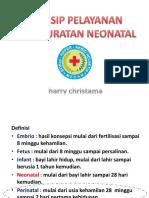 5gadar Neonatal s