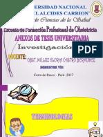 Investigacion Anexos Listo Hoy