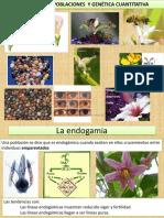 1. Exogamia, Endogamia y Polinización
