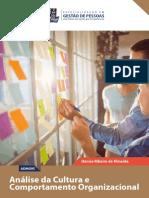 eBook Analise Cultura Comportamento Organizacional-Especializacao Em Gestao de Pessoas UFBA