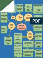 organizacion institucional  mapa