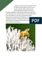 Para recolectar las materias primas que necesitan para fabricar miel y otros productos.docx