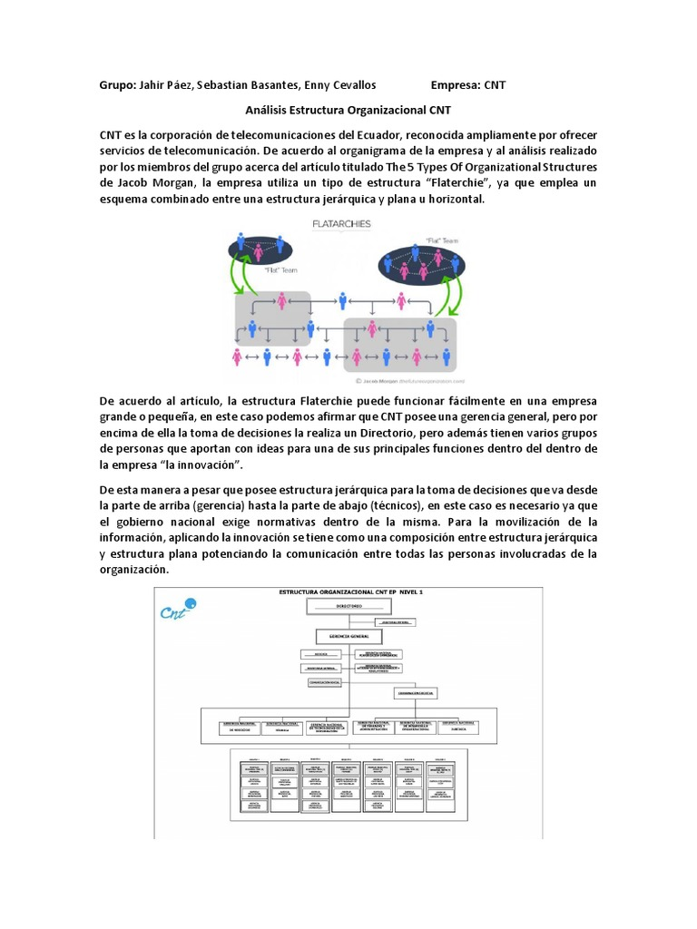 Análisis Estructura Organizacional Cnt