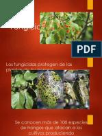 Fungicidas, Acaricidas y Nematicidas