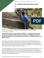 France 24 - Vanille de Madagascar Éveille Des Convoitises - 24.4.2018