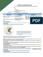 SES 09 FCC.docx