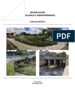INFORME MODELACION Cañada Bellaca.pdf