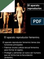 el-aparato-reproductor.ppt