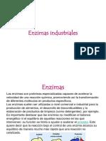 Tema 5.6 Enzimas y Proteinas de Interes Industrial - Alumnos (2)