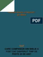 Intrebari Despre Companioni Din Biblie