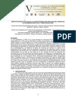 MyT2013_49_E.pdf