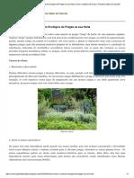 9 Maneiras de Fazer o Controle Ecológico de Pragas