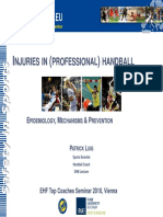 4.2. Handball Injuries - EURO