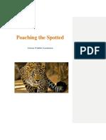 whitepaper trackchange portfolio